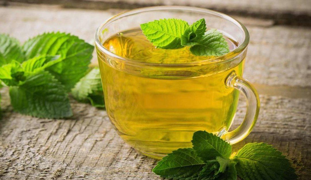 Tea Profile: Peppermint Tea