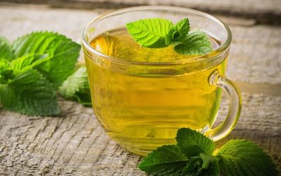 Tea Profile: Peppermint Tea