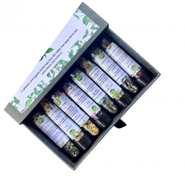 Single Herbs Sampler Box-3
